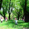 認定こども園って何?幼稚園と保育園との違いは?